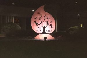 notte, monumento AVIS AIDO, Leffe